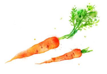 wortel lenteactie