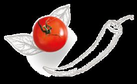 tomaat en peper