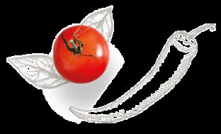 peper en tomaat